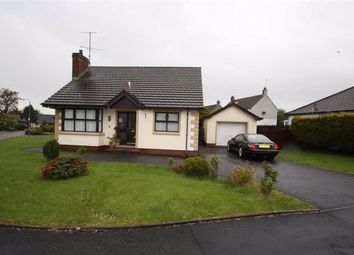 Thumbnail Detached bungalow to rent in Meadow Lane, Dromara, Down
