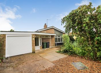 Thumbnail 3 bed detached bungalow for sale in Brecon Road, Brooke, Norwich