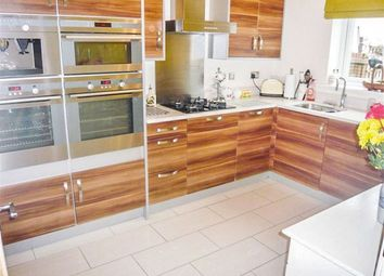 Thumbnail 4 bed property to rent in Gallt Y Ddrudwen, Broadlands, Bridgend