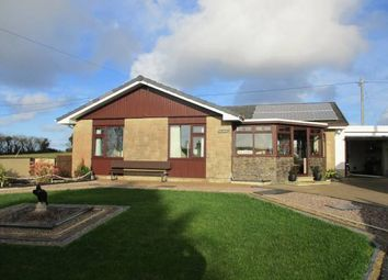 Thumbnail Bungalow for sale in Tanygroes, Cardigan