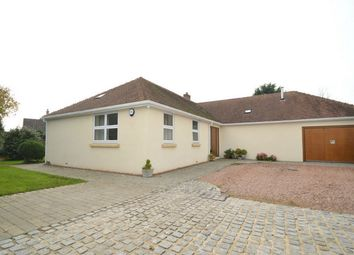 Thumbnail 3 bed detached bungalow for sale in 17 Rhododendron Avenue, Sticklepath, Barnstaple, Devon
