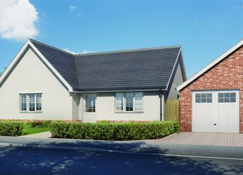 Thumbnail 3 bed detached bungalow for sale in Plot 8 'old Stables', Walton Road, Kirby-Le-Soken, Frinton-On-Sea, Essex