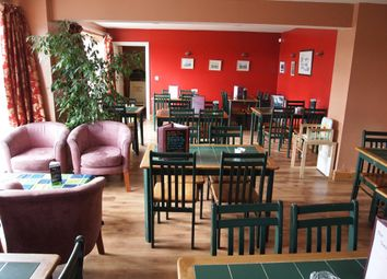 Thumbnail Restaurant/cafe for sale in Restaurants DL12, County Durham