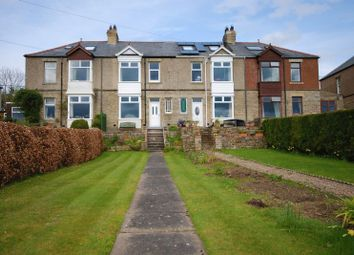 Thumbnail 4 bed semi-detached house for sale in Allen View, Catton, Allendale