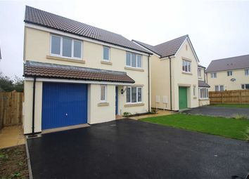 Thumbnail 4 bedroom detached house for sale in Mead Park, Bickington, Barnstaple