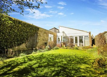 Thumbnail 3 bed bungalow for sale in Longstone Close, Beadnell, Northumberland