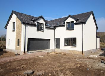 Thumbnail 4 bed property for sale in Plot 12, Clyde Grove, Crossford, Carluke
