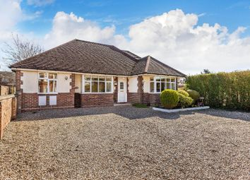 Thumbnail 4 bed detached bungalow for sale in Grange Road, Tongham, Farnham