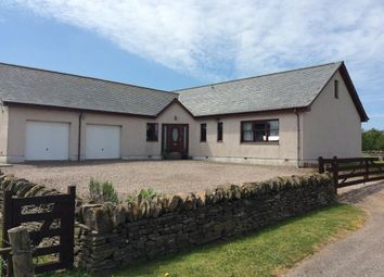 Thumbnail 4 bedroom detached bungalow for sale in Forfar