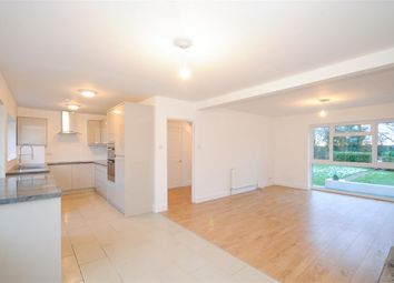 Thumbnail 4 bed detached house to rent in Mill Lane, Cressing, Braintree