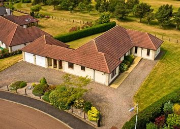 Thumbnail 4 bed detached bungalow for sale in Craigie Hill, Drumoig, Leuchars, St. Andrews