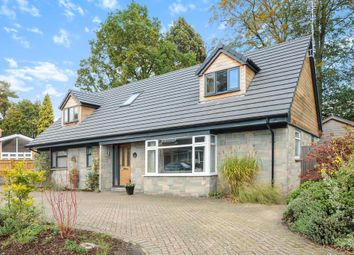 Thumbnail 5 bedroom detached house to rent in Highclere, Sunninghill
