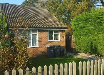 Thumbnail 2 bed bungalow to rent in Thatchers Close, Burgess Hill