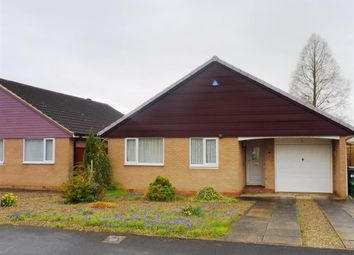 Thumbnail 3 bed detached bungalow to rent in Acacia Grove, Haxby, York