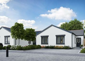 Thumbnail 3 bed detached bungalow for sale in Parsonage Court, Parsonage Lane, Begelly