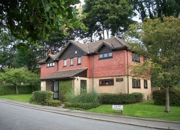 Thumbnail Studio for sale in Station Approach, Coulsdon North, Coulsdon