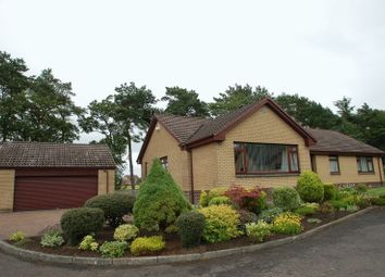 Thumbnail 4 bed detached bungalow for sale in Hillhouse Gate, Carluke