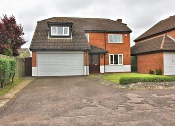 Thumbnail 4 bedroom detached house to rent in Buckfast Avenue, Bedford