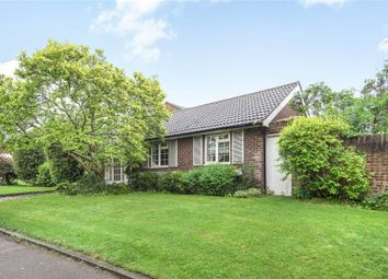 Thumbnail 3 bedroom bungalow for sale in Alderton Hall Lane, Loughton, Essex
