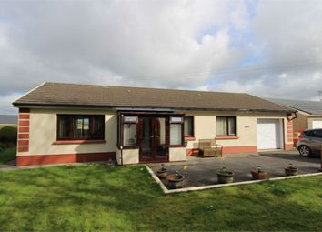 Thumbnail 3 bed detached bungalow for sale in Berwyn, Rhos, Llandysul, Carmarthenshire