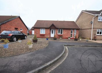 Thumbnail 2 bed bungalow to rent in Newburn Court, Newton Aycliffe