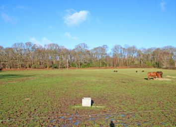 Thumbnail Land for sale in Embley Lane, East Wellow, Romsey