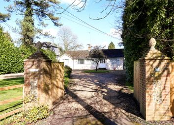 Thumbnail 4 bed detached bungalow for sale in Lymington Bottom Road, Medstead, Alton, Hampshire