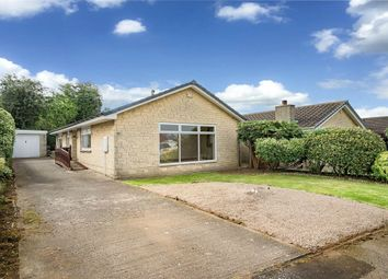 Thumbnail 3 bed detached bungalow for sale in Doleswood Drive, Laughton, Sheffield, Sheffield, South Yorkshire, UK