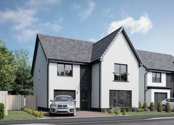 """Thumbnail 4 bedroom detached house for sale in """"Hutton"""" at Church Place, Winchburgh, Broxburn"""