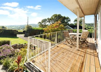 Thumbnail 2 bed bungalow for sale in Dalwood, Axminster, Devon