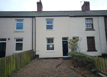 Thumbnail 2 bed terraced house to rent in Logan Street, Langley Park, Durham