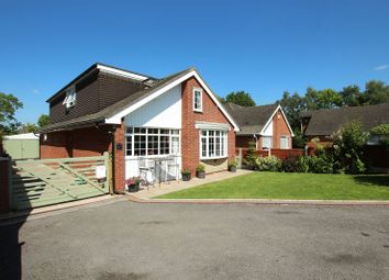 Thumbnail 4 bed detached bungalow for sale in Long Valley Road, Gillow Heath, Stoke-On-Trent