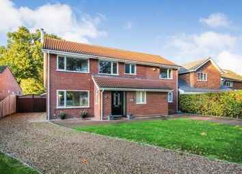 5 bed detached house for sale in Newton Street, Newton St. Faith, Norwich NR10