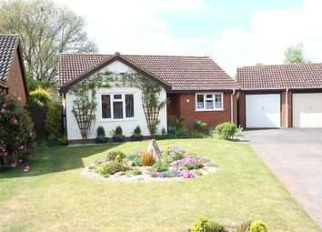 Thumbnail 2 bed bungalow for sale in The Grove, Martlesham Heath, Ipswich