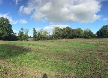 Thumbnail Land for sale in Ballykeeffe, Kilmanagh, Kilkenny