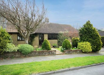 4 bed bungalow for sale in Millyard Crescent, Brighton BN2