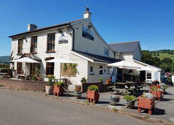 Thumbnail Pub/bar for sale in Pandy, Abergavenny