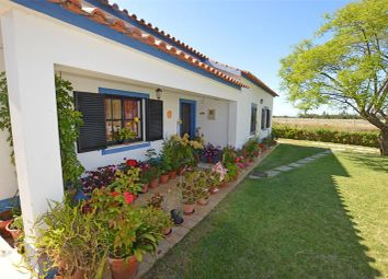 Thumbnail 5 bed detached house for sale in Odemira, Algarve, Portugal
