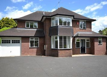 Thumbnail 4 bedroom detached house to rent in Dartmouth Avenue, Newcastle-Under-Lyme