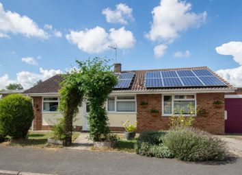 Thumbnail 3 bed bungalow for sale in Saint Andrews Garden, Sheperdswell