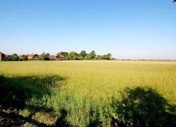Thumbnail 5 bed semi-detached house for sale in The Crescent, Marsworth, Tring