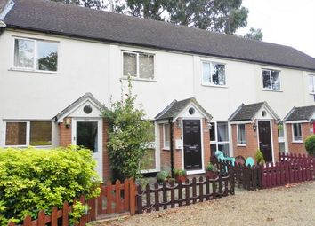 Thumbnail 2 bed terraced house to rent in London Road, Bagshot, Surrey