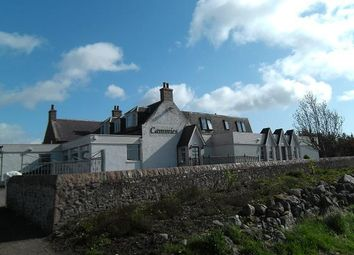 Thumbnail 4 bed flat to rent in 1st Floor Flat, Cammies, Cammachmore, Stonehaven