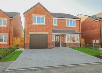 Thumbnail 4 bed detached house for sale in Lilywood Close, Calow, Chesterfield