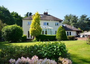 Thumbnail 5 bed detached house for sale in Echo Barn Lane, Wrecclesham, Farnham