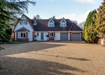 Thumbnail 5 bed property for sale in Heath Road, Thorpe End, Norwich