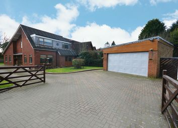 Thumbnail 4 bed detached bungalow for sale in Birchy Close, Shirley, Solihull