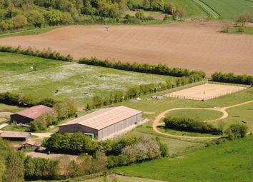 Thumbnail 7 bed equestrian property for sale in Ruffec, Charente, 16700, France