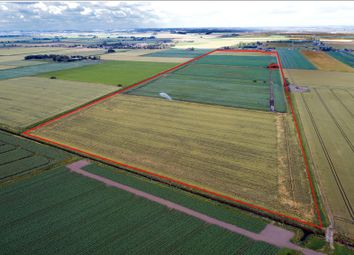 Thumbnail Land for sale in Ramsey St Mary's, Huntingdon, Cambridgeshire