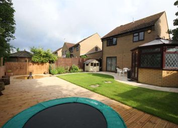 Thumbnail 4 bed detached house to rent in The Coltsfoot, Hemel Hempstead